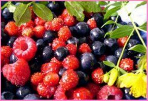 Крем с грис и плодове