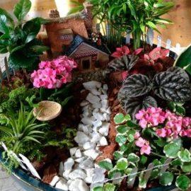 Как да си направим мини градина у дома